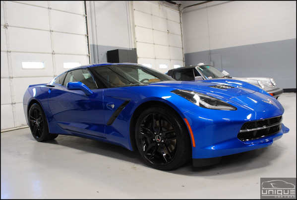Blue-C7-Stingray-30